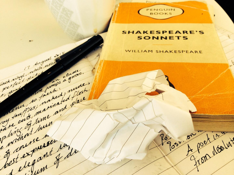 missing sonnet