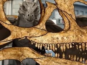 Chambers of Bone