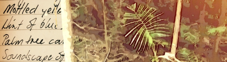 Five Starlings
